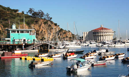 Colorful boats in Avalon Harbor