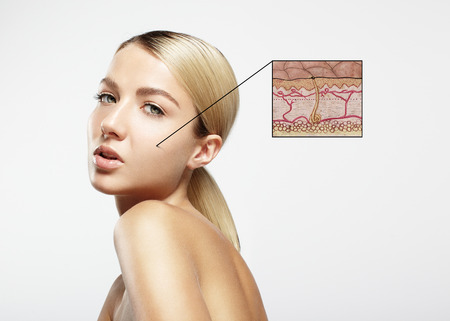 skin structure: woman with a 3D note, where drawn a skin structure