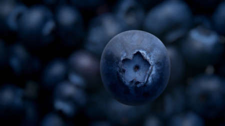 top view of blueberry falling down to blueberries on background