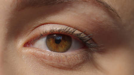 Caucasian girl attractive brown eye with mascara. Look to the camera. Studio shot with dramatic light extreme close-up high quality photo image. Archivio Fotografico