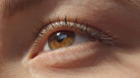 No make-up caucasian girl looking up. Extreme closeup brown eye. Studio shot with dramatic light close-up low angle portrait high quality photo image.