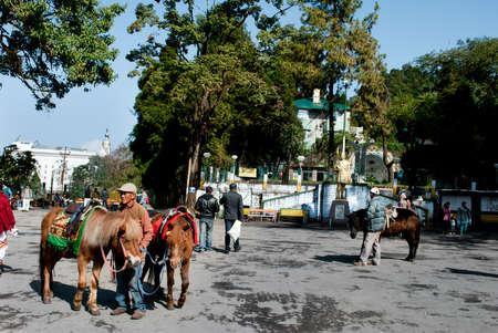 periferia: The Darjeeling Mall Il Chowrasta o il centro commerciale � il cuore della citt� di Darjeeling. Situato sulla cima di Nehru Road, questa � una terra grazioso appartamento dove i turisti e gente del posto vengono a oziare al sole, prendere posto su una delle tante panchine lungo la periferia, e watc