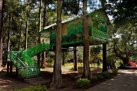 lodgings: Hanging cottage: One of the top-most attractions of Padmapuram Gardens in Araku valley in India is the hanging cottages.