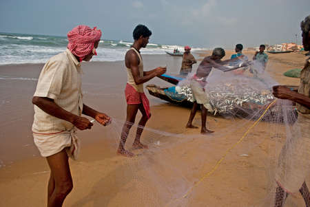 puri: Shorting Fish: A group of fishermen are shorting collected fish from fishing net at the sea beach of Puri, India. Editorial