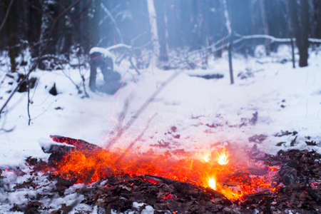 Fire burns in the snow in the woods, on a background of snow covered trees