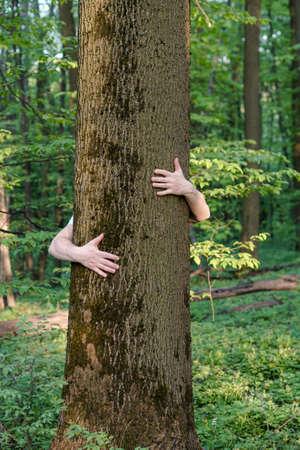 Tree hugging. Close-up of hands hugging tree