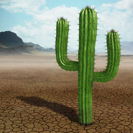 cactus botany: Very high resolution 3d rendering of a cactus in the desert. Stock Photo