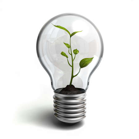 Very high resolution 3D rendering of a lightbulb with a plant inside.