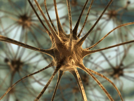 dendrite: Very high resolution 3d rendering representing the connection between neurons. Stock Photo