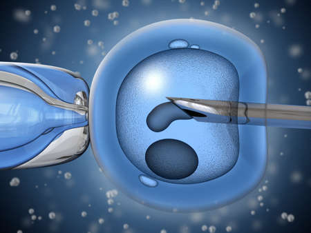 Very high resolution 3D rendering representing the process of artificial insemination. photo