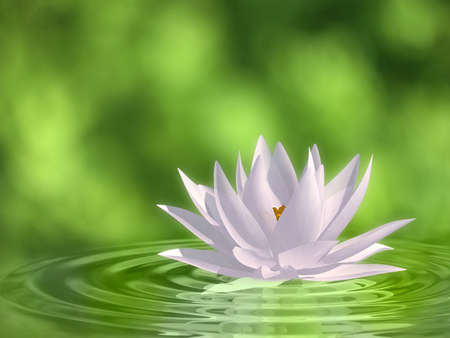 Very high resolution 3d rendering of a floating waterlily Stock Photo
