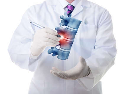 columna vertebral: De muy alta resoluci�n 3D de cuatro vertebae humano.