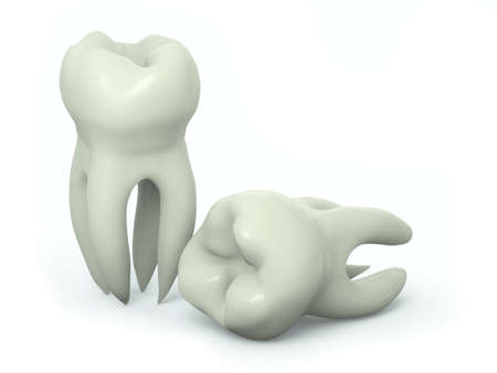 fluoride toothpaste: Very high resolution 3d rendering of two teeth over a white plane