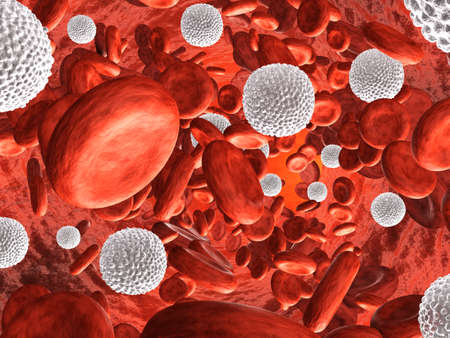 La circulation sanguine de très haute résolution rendu 3d Banque d'images - 26603739