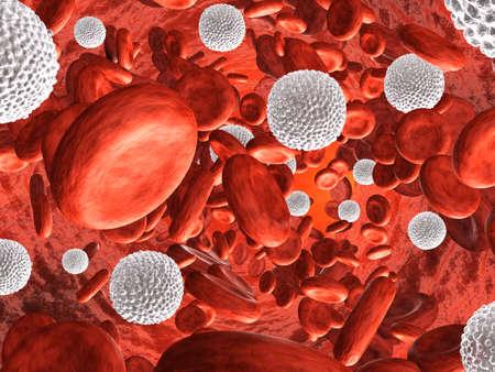 globulos blancos: Muy alta resolución representong de representación 3d circulación sanguínea