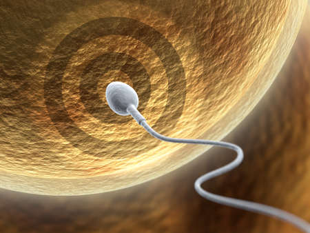 semen: Very high resolution 3d rendering representing fecundation Stock Photo