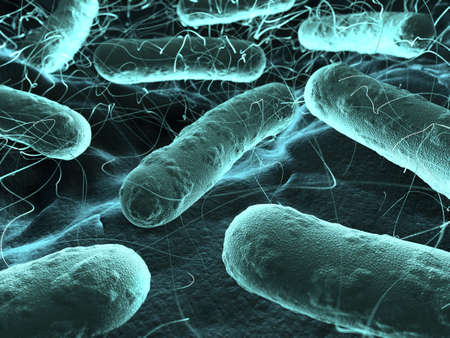 virus: Veri high resolution 3d rendering of bacteria seen under a scanning microscope