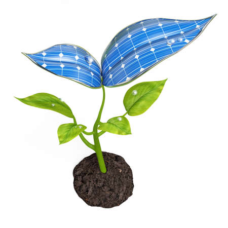 Very high resolution 3d rendering of a solar panel small plant photo