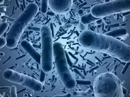 bacterias: Veri alta resolución 3d de bacterias visto bajo un microscopio de barrido