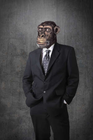 Monkey businessman