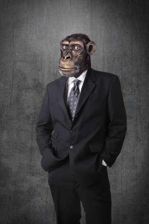 Monkey businessman