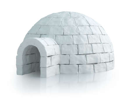 3d bungalow: Nordic landscape with igloo