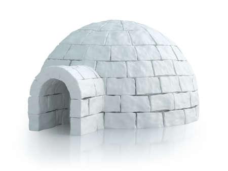Nordic landschap met iglo