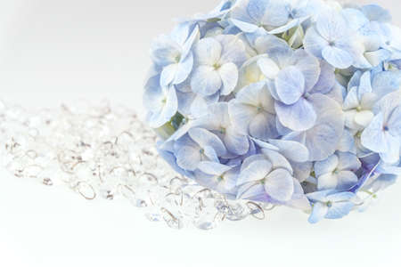 Plastic crystal with Light blue hydrangea flowers with crystal  isolated on white photo