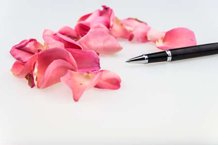 soft pedal: Black Ball Point Pen  with light pink rose petal on white background