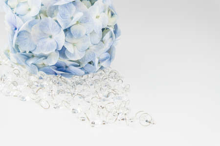 Plastic crystal with Light blue hydrangea flowers with crystal  isolated on white Stok Fotoğraf