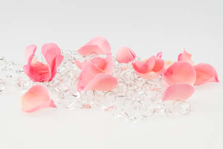 soft pedal: Light pink rose petal with crystal on white background