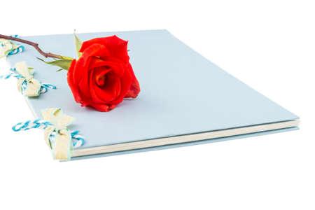 valentinas: orange rose isolated on white Stock Photo