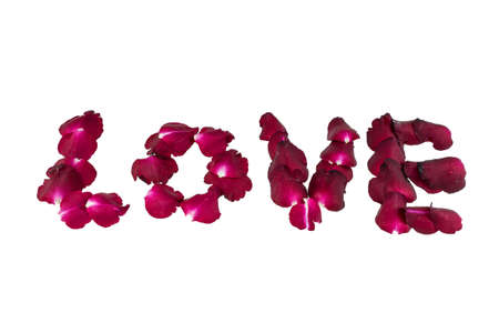 scattered in heart shaped: word love is written with rose petals on a white background