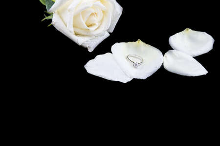rose ring: Diamond ring with white rose Stock Photo