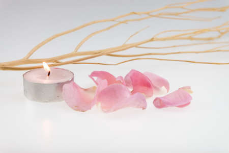 wood stick: light pink rose and dried wood stick with tea light candle
