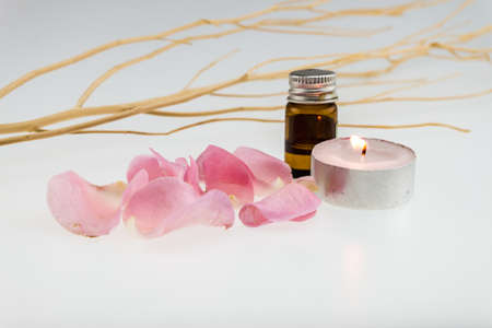 tea light: light pink rose,dry wood stick with tea light candle and aromatic essence Stock Photo