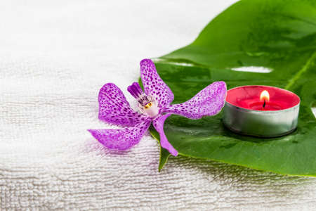 tea light: Pink mokara orchids and green leaf with red tea light candle  on white towel
