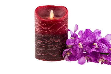 Pink mokara orchids with electrical candle isolated on white background photo