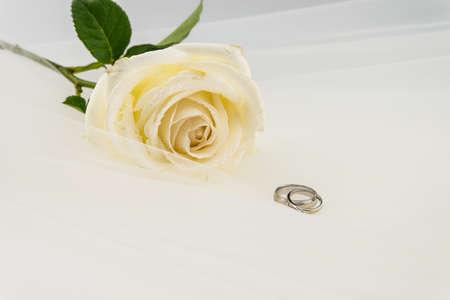 Wedding ring and White rose on white veil