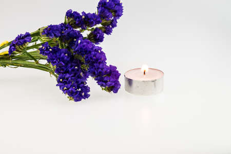 tealight: Statice flower with tealight candle isolated on white Stock Photo