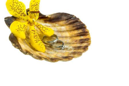 Wedding ring in seashell with Mokkara yellow orchid photo