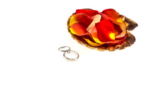 valentinas: Wedding ring and orange rose in seashell isolated on white