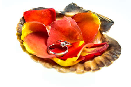 Wedding ring and orange rose in seashell isolated on white