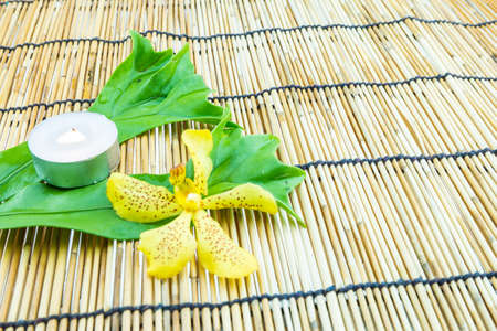 tea light: Mokkara yellow Orchid flower,green leaf and tea light candle  on bamboo background