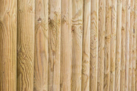 panel ling: Wood log  can be used as background textured
