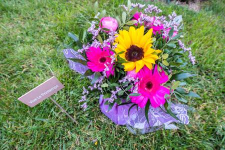 mixed flower bouquet: Vive le printemps concept- mixed flower bouquet Stock Photo
