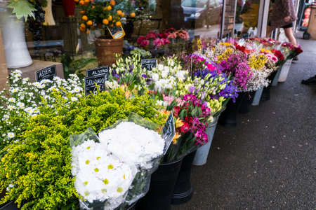 sidewalk sale: various plant in flower shop in summer time Stock Photo