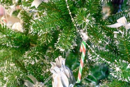 xmas background: Xmas tree background.