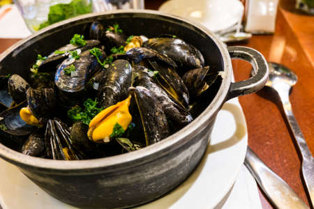 wine sauce: Steamed mussels in white wine sauce. Stock Photo
