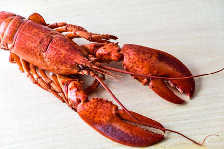 pincers: Boiled lobster on wood background. Stock Photo